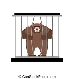 Bear in Zoo cage. Strong Scary wild animal in captivity....