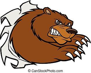 Bear Mascot Attack