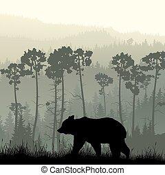 Bear on grassy hillside. - Square illustration of grassy...