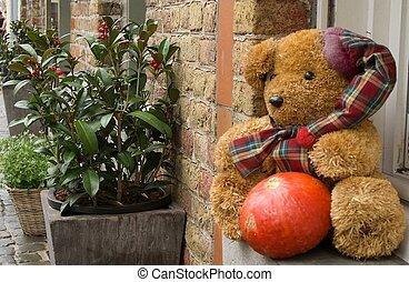 Bear plush, toy