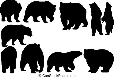 Bear Silhouette vector illustration