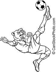 Bear Soccer Football Player Animal Sports Mascot