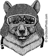 Bear wearing motorcycle helmet. Vintage motorcycle...