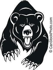 Wild bear illustration.