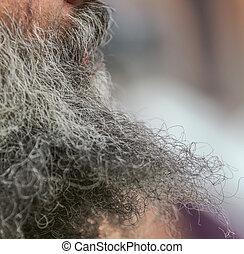Beard on the face of a man