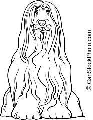 bearded collie dog cartoon for coloring - Black and White...