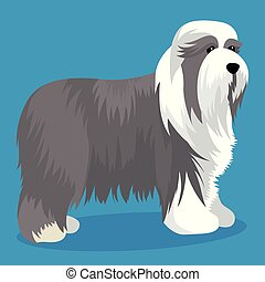 Bearded collie dog vector illustration