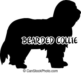 Bearded Collie silhouette real word - Bearded Collie dog...