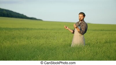 Bearded man inspecting quality of harvest outdoors - Mature ...