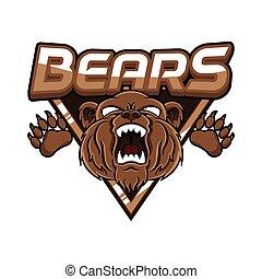 bears banner illustration design