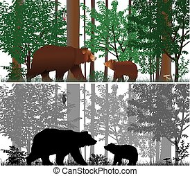 Bears on the background of trees. Colour and black-and-white...