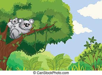 Bears sitting on a tree