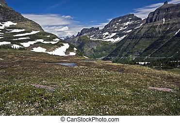 beatiful, parque nacional geleira
