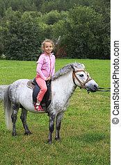 beau, équitation, girl, pony.