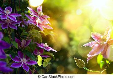 beau, été, art, jardin, printemps, clématite, fond, fleurs, ou