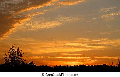 beau, été, coucher soleil