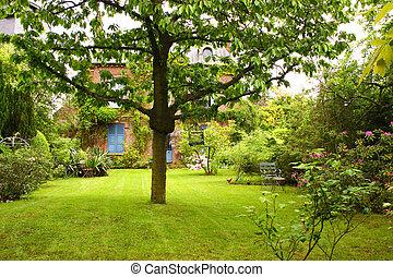 beau, été, jardin