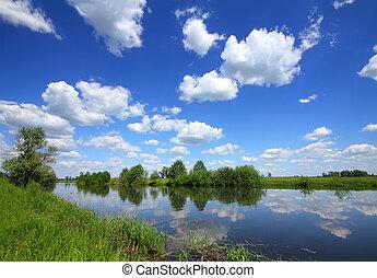 beau, été, lac, paysage