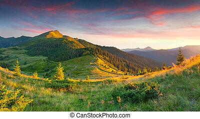 beau, été, paysage, montagnes