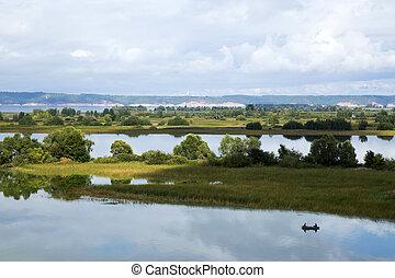 beau, îles, paysage rivière, volga