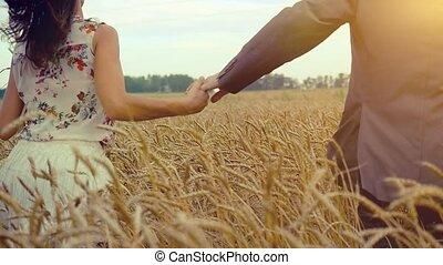 beau, 1920x1080., femme, blé, courant, champ, slowmotion., tenant mains, homme, hd, beau