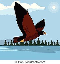 beau, aigle, lac, majestueux, oiseau