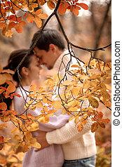 beau, amour, couple étreindre, jour automne