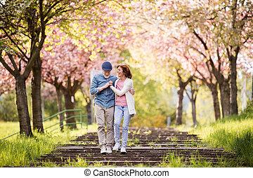 beau, amour, printemps, couples dehors, personne agee, nature.