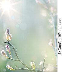 beau, art, printemps, floraison, arbre, fond, ciel