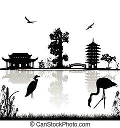 beau, asiatique, paysage