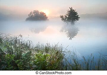 beau, automne, automne, paysage, sur, brumeux, brumeux, lac, wih, glowin
