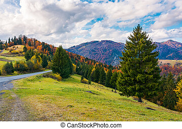 beau, automne, campagne