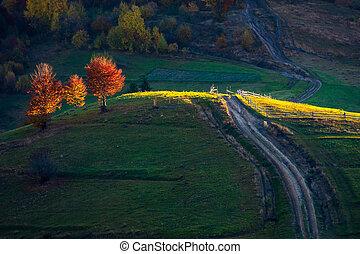 beau, automne, campagne, montagnes