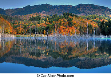beau, automne, lac, vue