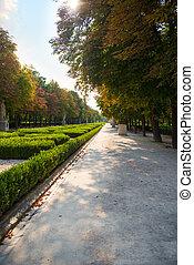 beau, automne, rue, park.