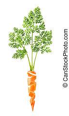 beau, blanc, carotte, fond, peau