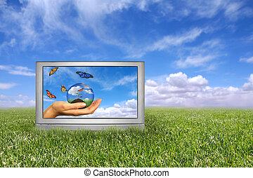 beau, bleu, concept., ciel, foyer, nuageux, champ, profondeur, vert, devant, la terre, herbe, intentional, extrême