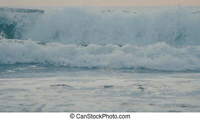 beau, bleu, lent, cassant vague, mouvement, océan