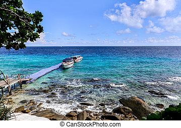 beau, bleu, oceanans, hors-bord, rivage