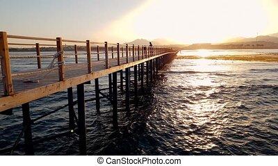 beau, bois, lumière, métrage, long, coucher soleil, 4k, mer, jetée