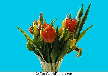 beau, bouquet, printemps, -, tulipe, fleurs