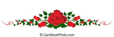 beau, bouquet, roses