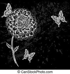 beau, butterflies., noir blanc, fleur