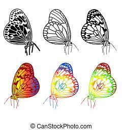 beau, butterflies., vecteur, ensemble