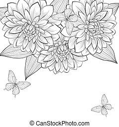 beau, cadre, papillons, arrière-plan noir, monochrome, dahlia, fleurs blanches