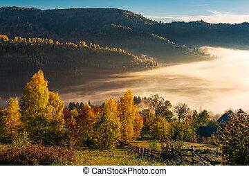 beau, campagne, automne, levers de soleil