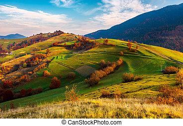 beau, campagne, automne, montagneux