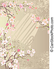 beau, cerise, floraison, branches, fond