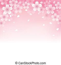 beau, cerise, fond, fleur