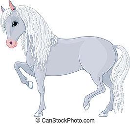 beau, cheval